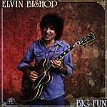 Elvin Bishop Big Fun