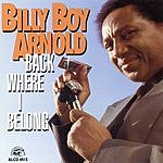 Billy Boy Arnold Back Where I Belong