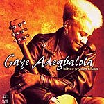 Gaye Adegbalola Bitter Sweet Blues