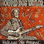 Hound Dog Taylor Release The Hound