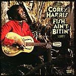 Corey Harris Fish Ain't Bitin'