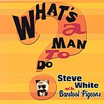 Steve White & The Barstool Pigeons What's A Man To Do?