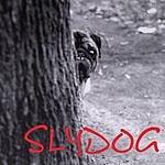Slydog Slydog