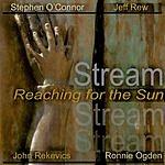 Stream Reaching For The Sun