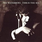 The Waterboys This Is The Sea (Remastered)