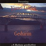 Yisrael Lutnick Gesharim