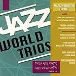 Mark Weinstein Jazz World Trios