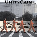 UnityGain Only A Fool