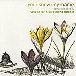 Voices Of A Different Dream You Know My Name
