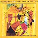 Mark Egan Trio