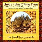 Yuval Ron Under The Olive Tree