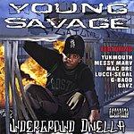 Young Savage Underground Dwella