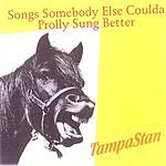TampaStan Songs Somebody Else Coulda Prolly Sung Better