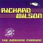 Richard Wilson The Amazing Pudding