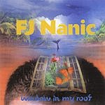 FJ Nanic Window In My Roof