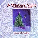 Ensemble Galilei A Winter's Night: Christmas In The Great Hall