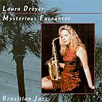 Laura Dreyer Mysterious Encounters