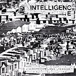 The Intelligence Boredom And Terror