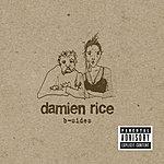 Damien Rice B-Sides EP (Parental Advisory)