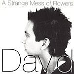 David Garza A Strange Mess Of Flowers