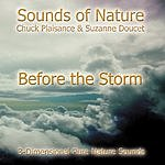 Suzanne Doucet Before The Storm