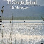 Barleycorn A Song For Ireland
