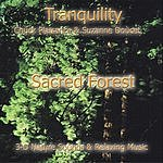 Suzanne Doucet Sacred Forest