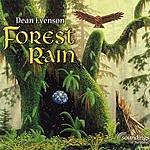 Dean Evenson Forest Rain