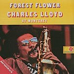 Charles Lloyd Forest Flower/Soundtrack