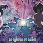 Aquanote The Pearl