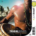 Timbalada Pure Brazil: Tribal Bahia