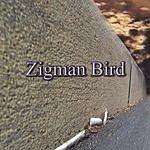 Zigman Bird Zigman Bird