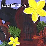 Akamai Brain Collective Akamai Brain Collective
