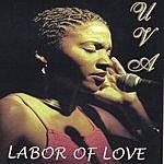 Uva Labor Of Love