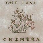 The Cost Chimera