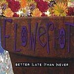 Flowerpot Better Late Than Never