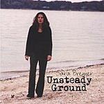 Sara Brenner Unsteady Ground