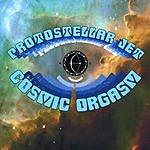 Protostellar Jet Cosmic Orgasm