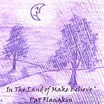 Pat Flanakin In The Land Of Make Believe
