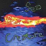 Sea Creature Sea Creature