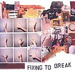 Crystal Brandt Fixing To Break