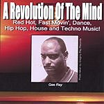 Gee Ray A Revolution Of The Mind