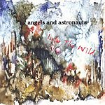 Angels And Astronauts Into The Wild