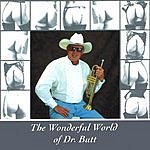 Dr. Tom Butt The Wonderful World Of Dr. Butt