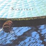 Sentinel Sentinel