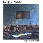 Bright Fields Big Bright Spot