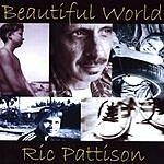 Ric Pattison Beautiful World