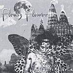 Marta Wiley Flesh Flower
