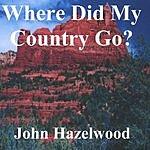 John Hazelwood Where Did My Country Go?