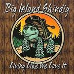 Big Island Shindig Living Like We Love It